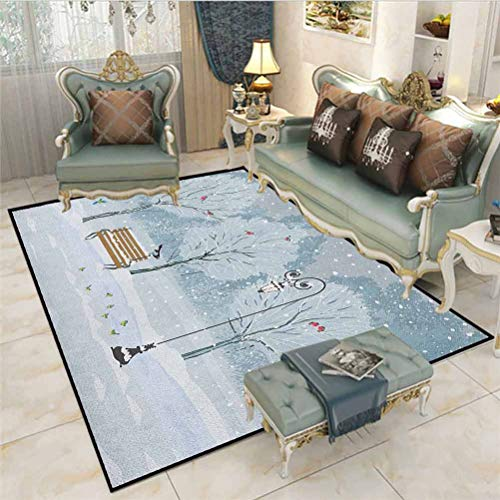 Christmas Outdoor Rug Rugs Bathroom Rugs Area Rugs Snow Falling in The Park on a Cold Winter Day Birds Lanterns Xmas Season Picture Bedroom Home Nursery Yoga Mats Blue White 4 x 6 Ft