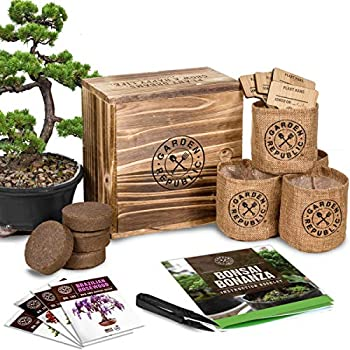 Garden Republic Mini Bonsai Tree Seed Growing Kit