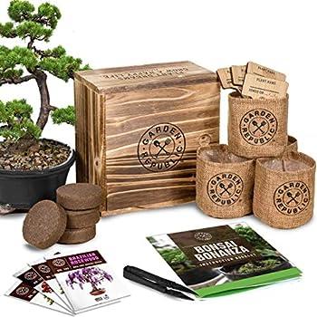 Best bonsai rda Reviews