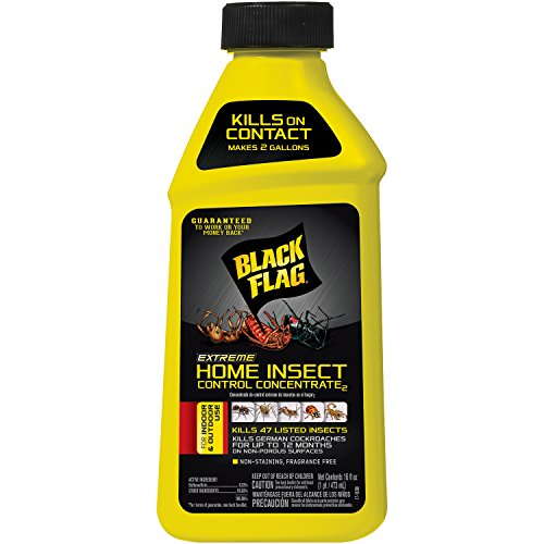 Black Flag Extreme Home Insect Control Concentrate, 16-Ounce