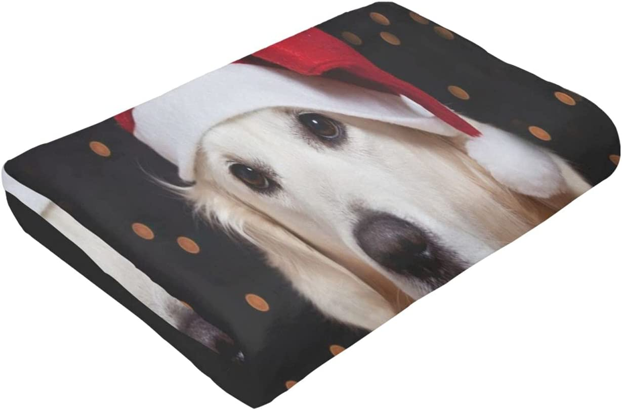 Golden Portland Mall Retriever Ultra-Soft Micro Fleece Manufacturer direct delivery Be for Suitable Blanket