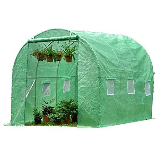 PARVIFLORE® Gewächshaus klein - Garten Treibhaus - Foliengewächshaus Winterfest - Anbau und Ernte von Obst und Gemüse das ganze Jahr über ohne Angst vor dem Wetter