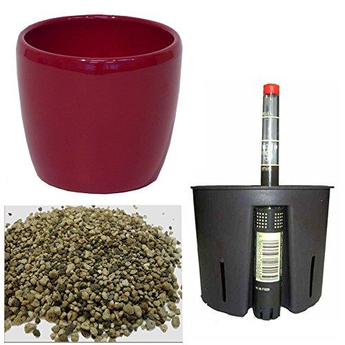 Set 4 teilig für Erdpflanzen Keramik Blumentopf Venus weinrot Ø 16cm H 14 cm Kulturtopf 13/12 Wasserstandsanzeiger WA 12 Erdersatz