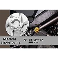 KAWASAKI ER-6N/6F NINJA650用 フレームホールキャップ 左右セット ゴールド DI-FHC-KA-03-G