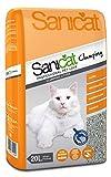 Cat Litter For Odors