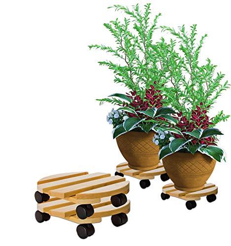 BigDean 2X Pflanzenroller rund Buchenholz massives Holz 30 cm bis 120 Kg Rolluntersetzer
