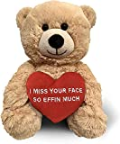 I Miss Your Face So Effin Much (Beige) 10 Inch Teddy Bear & Gift Bag - Mothers Day Teddy Bear - Funny Cute Stuffed Animal for Girlfriend, Boyfriend - Birthday, Anniversary, Long Distance - Witty Bears