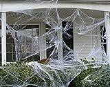 JuguHoovi Halloween Deko,Halloween Spinnennetz,Halloween Deko Garten Horror Grusel Deko Set Halloween Spinne Outdoor Indoor Spinnennetz 120g mit 20 Spinne für Party Deko Dekoration - 4