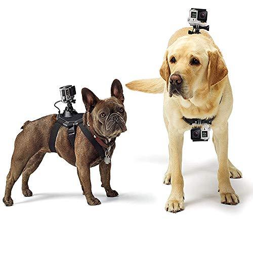 Brandless Hundebrustgurt, Die Action-Kamera erhält eine verstellbare Schraube an der Rückseite des Gürtels, die für alle Gopro Hero-Modelle geeignet ist.