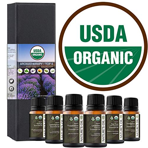 Top 6 Certified Organic Essential Oil 10ml Gift Set Therapeutic Grade Kit with Lavender, Tea Tree, Eucalyptus, Peppermint, Orange, Lemongrass
