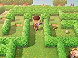 Amiibo Invites and The May Day Tour