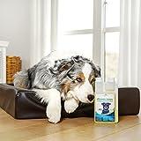 Geruchsneutralisierer für Hunde – natürlicher Entferner von Urin-Geruch - 3