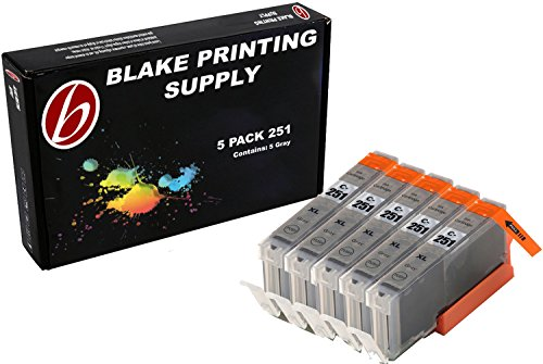 Blake Printing Supply 5 Pack Gray Compatible CLI-251XL CLI-251 CLI251XL Ink Cartridges for PIXMA iP8720, MG6320, MG7120, MG7520