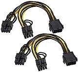 zdyCGTime CPU 8 Pines Hembra a PCIe Doble 2X 8 Pines (6 + 2) Macho Cable Divisor,para Tarjeta gráfica BTC Miner 9 Pulgadas 8 Pines PCIe PCI Express Tarjeta de Video gráfica GPU.(CPU a GPU)