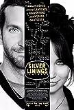 Liuqidong Poster Wandbilder Silver Linings Playbook Film