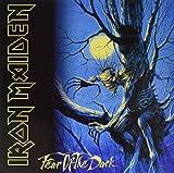 Fear of the Dark (2-LP Set, 180-Gram Vinyl)