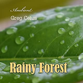 Rainy Forest audiobook cover art