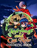 Ladybug And Cat Noir Coloring Book: Ladybug And Cat Noir Great Gift Adult Coloring Books