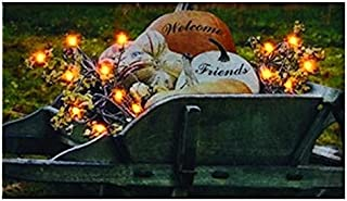 Kennedys Country Collection 65798 Canvas-Harvest Welcome, Radiance Lighted - 9 x 16