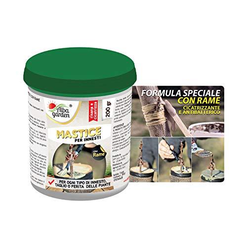 Albagarden - Mastice Per Innesti e Potature ++ CON RAME ++ Antibatterico Pasta Cicatrizzante Curativa Per Ferite Piante Alberi Arbusti Bonsai x 200 gr