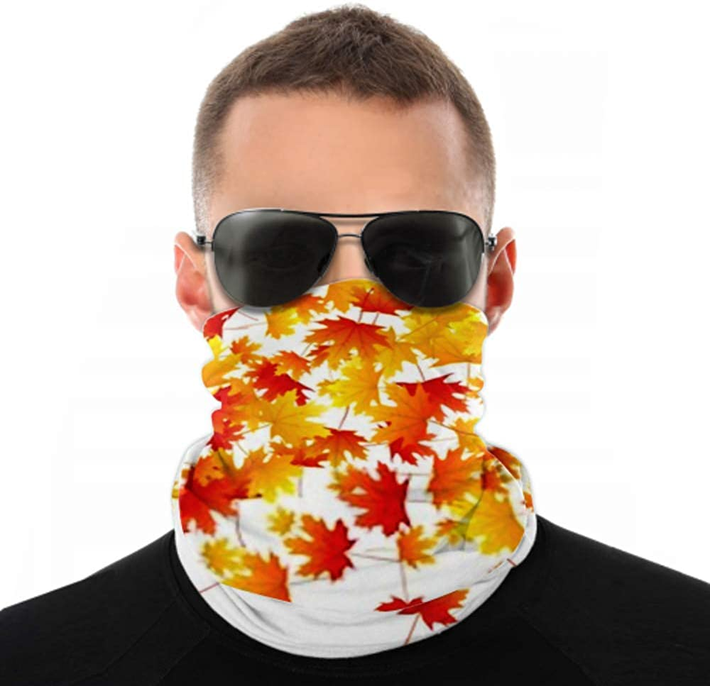Headbands For Men Women Neck Gaiter, Face Mask, Headband, Scarf Beautiful Maple Leaves Background Seasonal Vector Turban Multi Scarf Double Sided Print Womens Headbands Headwraps For Sport Outdoor