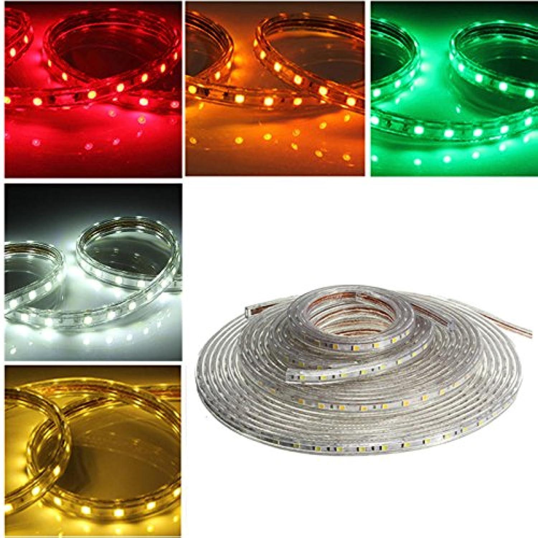 Bazaar 10M 5050 wasserdichte IP67 flexible LED Streifen Licht für Xmas Home Decor 110V