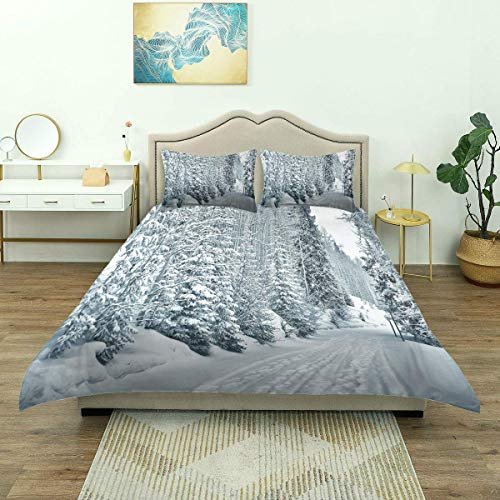 Duvet Cover,Ski Themed Snowy Road Cold Parts of World Footprints Colorado United States,Luxury Bedding Set Comfy Lightweight Microfiber