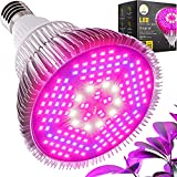 Haus Bright Original LED Grow Light Bulb - for Indoor Plants Full Spectrum Lamp | Seed Starting, House, Garden, Vegetable, Succulent, Hydroponic, Greenhouse & Medicinal Growing | 100W E27