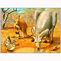 DSJHK パズル木製アダルトパズル1000ピース動物絵画カンガルーとトルコ装飾の写真教育玩具減圧ゲームパズルジグソーパズル