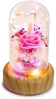 Rose Lamp Bluetooth Speaker, Real Preserved Rose in Glass Dome Speaker Rose Night Light Forever Flowers Rose Her on Mother...