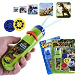 Torch Projector Projection Lighting Story Torches Light Toy Slide Lamp Educational Learning Bedtime Night Light for Kids 3 4 5 6 Years Old (48 Images - Dinosaur & Sea World)