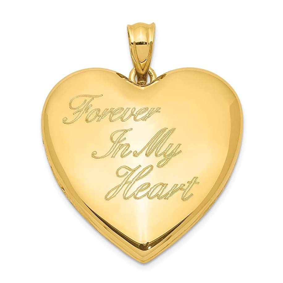 ICE CARATS 925 Sterling Silver Gold Tone Forever in My Heart Ash Holder Photo Pendant Charm Locket Chain Necklace That Holds Pictures Fine Jewelry Gifts for Women for Her