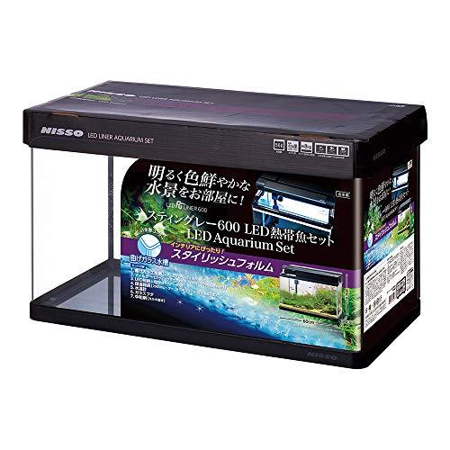 ニッソー 水槽 スティングレー600 LED熱帯魚セット