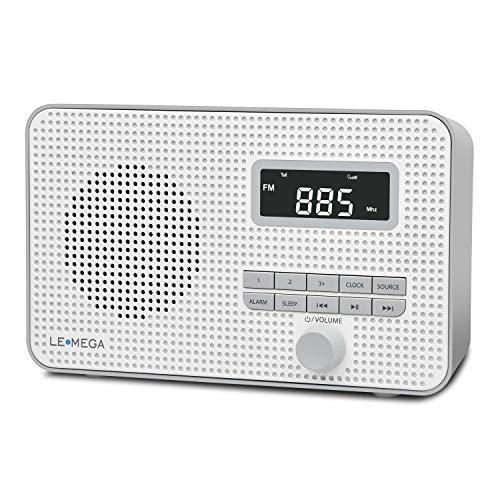 LEMEGA DR2 Portable AM/FM Digital Radio