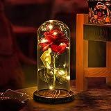 Nosii 造花 バラ プリザーブドフラワーバラ 造花ライト LED お供え花 木製ベース 飾りランプ バレンタイン 母の日 誕生日 プレゼント 結婚ギフト (深い色木ベース)