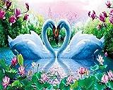 DIY 5D Pintura de Diamante Bordado Completo Amor del lago de los cisnes Diamond Painting Full Cristal Lienzo Mosaico Diamante Arte Craft Decoración del hogar Round Drill(30x40cm/12x16inch)