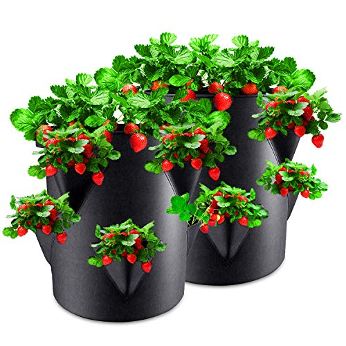 Rouffiel Strawberry Planting Bags, 2 Pack 10 Gallon Planting Pots with Window and Handle for Indoor & Outdoor Strawberry/Plant Containers