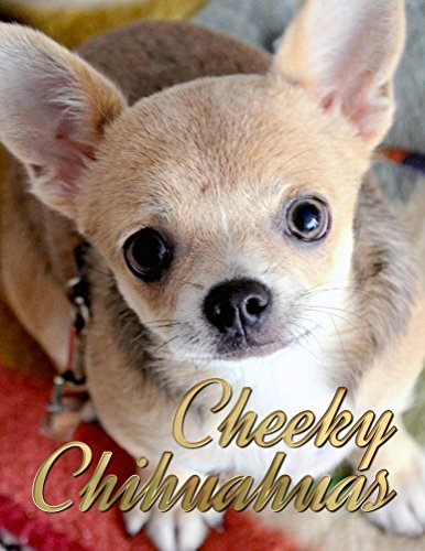 Cheeky Chihuahuas (Dogs Picture Book -...