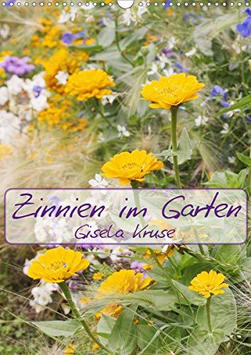 Zinnien im Garten (Wandkalender 2021 DIN A3 hoch)