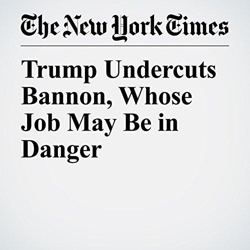 Trump Undercuts Bannon, Whose Job May Be in Danger copertina