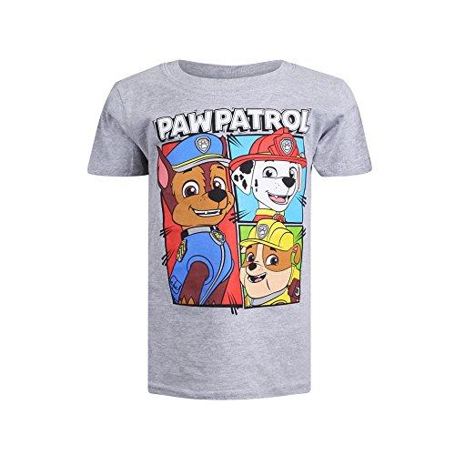 PAW PATROL Jungen Team T-Shirt, Grau (Grey Marl SPO), S