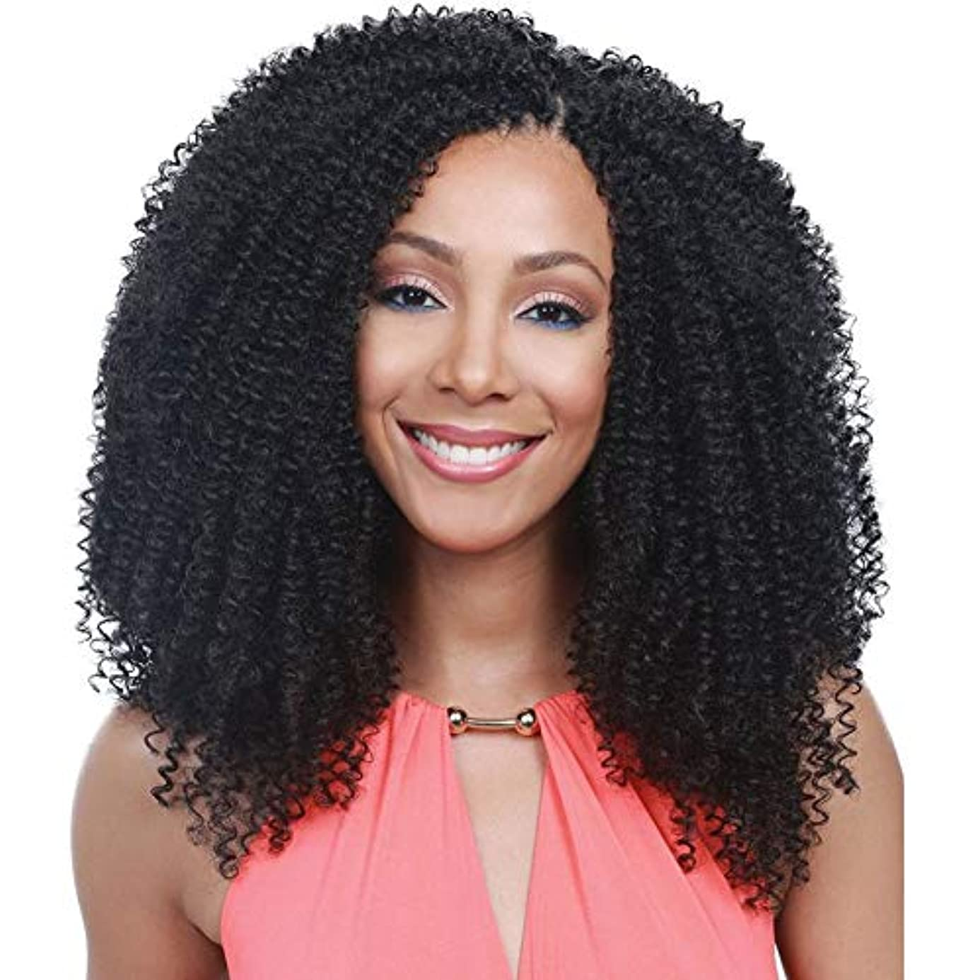 Armmu Lace Front Wigs Afro Kinky Curly Synthetic Wigs for Women - Full Hair Natural Black, Shoulder Length, Deep Right L Part, 20 gkt1948769