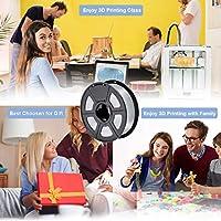SUNLU Filamento per Stampante 3D, Filamento PLA 1.75, Tangle Free Filamento PLA, 1KG Trasparente #6