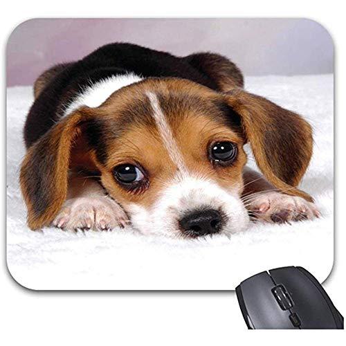 Smity Beagle Puppy Dog Mauspad 30 * 25 * 0,3 cm Mauspad Modisch gestaltete Mauspads Trendy Office Desktop-Zubehör