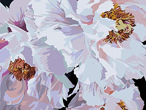ZLLHAPPY Cuadros para Pintar por Numeros Niños Flor Rosa Blanca Pintura por Números con Pinceles Y Pinturas Decoraciones para El Hogar - 40X50Cm