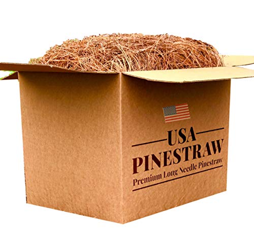 Long Needle Pine Straw | On Sale | Pine Needle Mulch - Covers up to 100 sf.