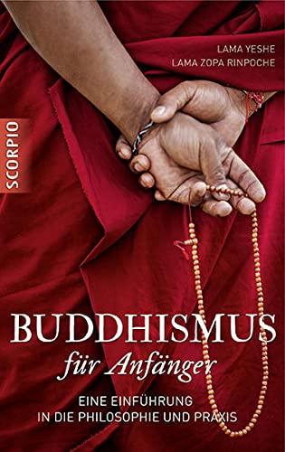 Buddhismus für Anfänger: Eine Einführung in die Philosophie und Praxis