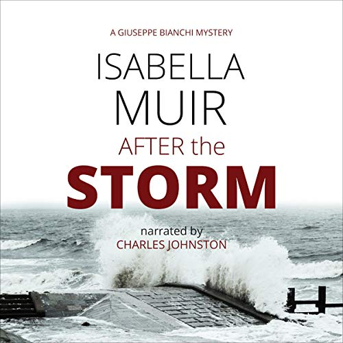 After the Storm cover art