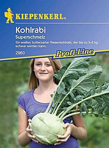 Kohlrabi (Riesen-kohlrabi) 'Superschmelz'