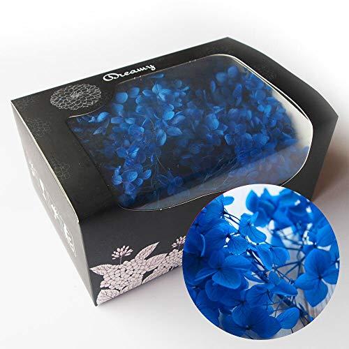 アジサイ・ヘッド 青 約20g プリザーブドフラワー ブルー(d) 花材 レジン パーツ クラフト あじさい 青 ハーバリウム用